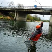 Rieka Váh pod mostop.