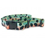 Wingo Belts